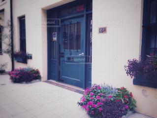 通りの花々の写真・画像素材[1378621]