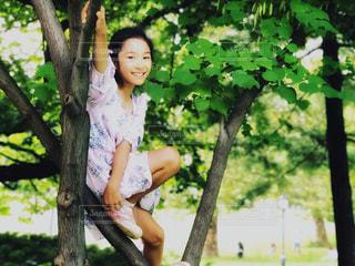 セントラルパークで木登りの写真・画像素材[1411865]