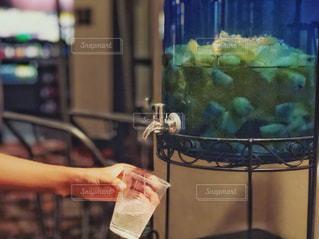 パイナップル水 1の写真・画像素材[1427417]