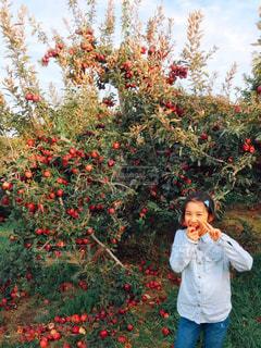 風景,空,秋,ニューヨーク,木,屋外,緑,赤,葉,アメリカ,景色,女の子,果物,人,りんご,林檎,食べる,地面,食欲,りんご園,秋の味覚,フォトジェニック,食欲の秋,インスタ映え,りんご狩り