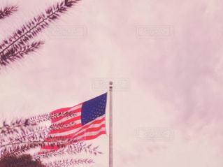 風景,空,秋,ニューヨーク,屋外,夕暮れ,夕方,アメリカ,景色,星条旗,国旗,旗,夕空,秋空,フォトジェニック,イネ科,多年草,インスタ映え,チカラシバ,ミチシバ