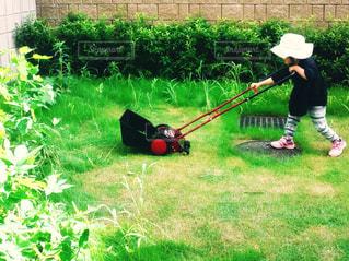 草刈りのお手伝いの写真・画像素材[1491847]
