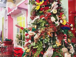 毎日がクリスマスの写真・画像素材[1547484]