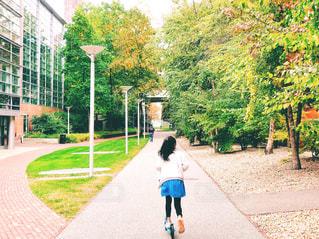 風景,建物,紅葉,木,海外,緑,アメリカ,女の子,樹木,人物,道,人,未来,街灯,芝,通り,夢,ポジティブ,ボストン,真っ直ぐ,進む,可能性,ケンブリッジ,前,前進,キックボード,ハーバード大学,マサチューセッツ