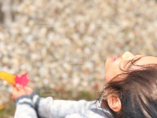 秋,紅葉,屋外,海外,赤,黄色,葉,アメリカ,女の子,楓,人物,人,笑顔,未来,夢,ポジティブ,ボストン,上,希望,目標,前向き,可能性,ケンブリッジ,マサチューセッツ