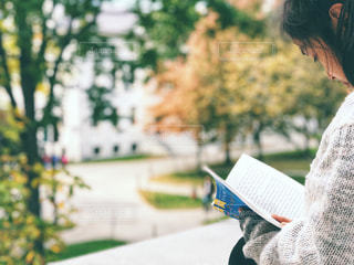 ハーバード大学図書館横で読書 2の写真・画像素材[1572829]