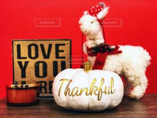 インテリア,秋,LOVE,屋内,海外,赤,白,カラフル,アメリカ,景色,鮮やか,人形,置物,未来,かぼちゃ,アルパカ,happy,夢,ありがとう,ポジティブ,ゴールド,飾り,感謝,目標,南瓜,カボチャ,フォトジェニック,前向き,可能性,thankful