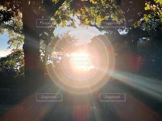 明日への光の写真・画像素材[1582734]