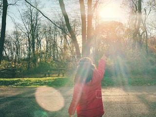 子ども,自然,公園,ニューヨーク,木,屋外,海外,ピンク,コート,ベンチ,アメリカ,日差し,女の子,光,樹木,人物,人,外国,未来,NY,夢,ポジティブ,希望,目標,フォトジェニック,可能性,タリータウン,ロックフェラー州立公園