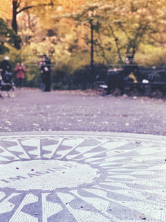 秋のストロベリーフィールズの写真・画像素材[1638417]