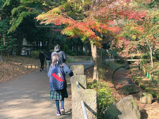 紅葉の残る公園を歩く女の子の写真・画像素材[1668029]