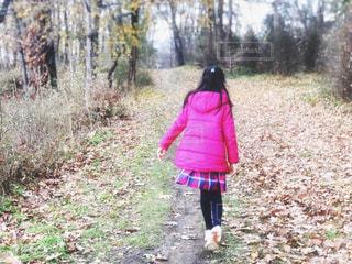 落ち葉の中、散策中の女の子の写真・画像素材[1682433]