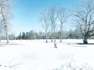 雪に足が埋もれるのが楽しい女の子の写真・画像素材[1684304]