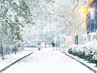 雪遊びする少女と父の写真・画像素材[1735801]