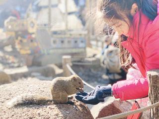 リスに餌をあげる少女の写真・画像素材[1750396]