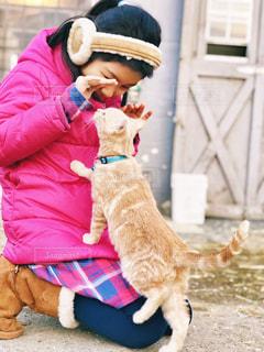 猫、大好きの写真・画像素材[1783517]