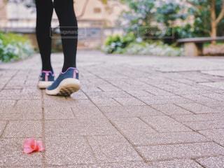 散歩中の足元の写真・画像素材[1841579]