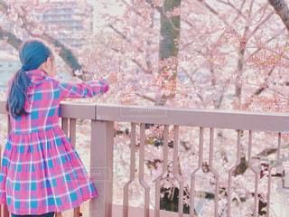 光が丘公園の桜と女の子の写真・画像素材[2029746]