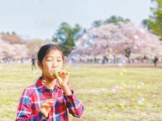 満開の桜としゃぼん玉で遊ぶ女の子の写真・画像素材[2030928]