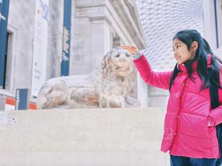 ライオンの頭を撫でるの写真・画像素材[2035141]