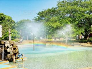 水辺の虹の写真・画像素材[2167588]