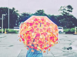 雨の日に映える傘の写真・画像素材[2239438]