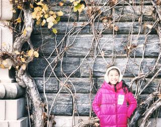 壁の蔦と女の子の写真・画像素材[2281886]