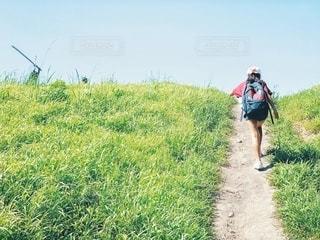 丘を登るの写真・画像素材[2674683]