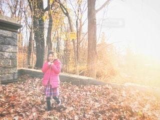 落ち葉で遊ぶ少女の写真・画像素材[2681511]