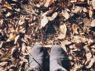 落ち葉とブーツの写真・画像素材[2735832]