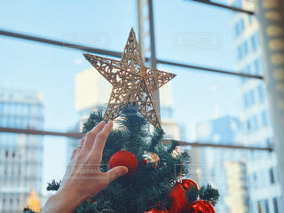 女性,1人,空,インテリア,冬,手,手のひら,星,樹木,人物,クリスマス,ツリー,クリスマスツリー,12月,手の甲,オーナメント,40代,クリスマス ツリー