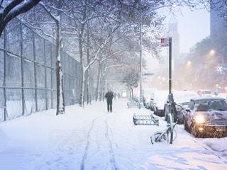 降雪と通りの写真・画像素材[2848810]