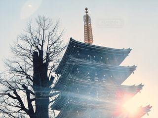 風景,空,冬,夕日,木,屋外,東京,太陽,夕焼け,夕暮れ,浅草,日光,夕方,景色,日差し,光,観光,樹木,浅草寺,五重塔,旅行,寺,夕暮れ時,五重の塔,日中,フォトジェニック,インスタ映え