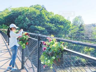 橋の上から写真を撮る女の子の写真・画像素材[3164048]