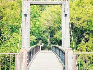 新緑と橋の写真・画像素材[3199624]
