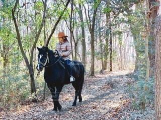 森の中で馬に乗っている少女の写真・画像素材[3660088]