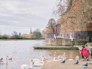 大きな川と鳥と女の子の写真・画像素材[3704325]