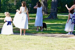 女性,後ろ姿,ドレス,人物,背中,人,後姿,海外結婚式