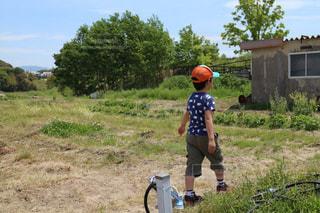 草の中に立っている小さな男の子の写真・画像素材[1167719]