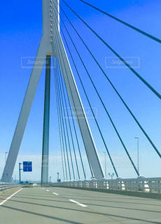斜張橋の写真・画像素材[1271628]