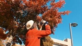 紅葉と赤コートの写真・画像素材[3886600]