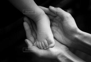 親子の写真・画像素材[1145608]