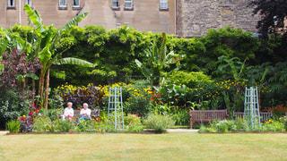 庭園の人々 のグループの写真・画像素材[1159998]