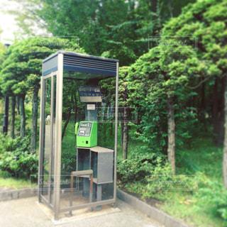 公園の中の緑の公衆電話の写真・画像素材[1163771]