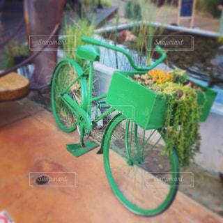 緑の葉がたくさんトッピング テーブルの写真・画像素材[1163834]