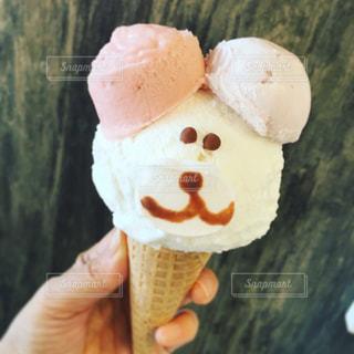 犬,動物,笑顔,コーン,アイスクリーム,犬のアイスクリーム