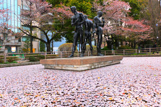花,桜,プール