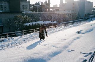 去年の冬の写真・画像素材[1691273]