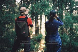 森の中の人々の写真・画像素材[2227412]
