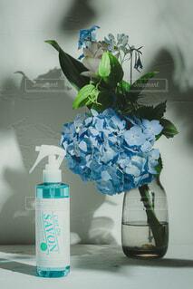 花,屋内,花束,花瓶,ボトル,草木